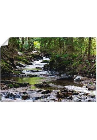 Artland Wandbild »Bachlauf im Wald«, Gewässer, (1 St.), in vielen Größen &... kaufen