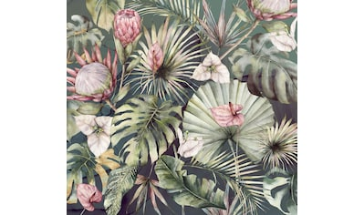 Komar Fototapete »Vliestapete Monsterawelt«, bedruckt-geblümt-floral-realistisch, 300... kaufen