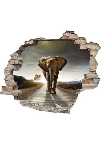 queence Wandtattoo »Elefant« kaufen