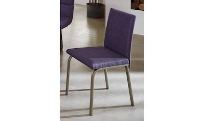 SCHÖSSWENDER Stuhl »Tereza«, Rücken und Sitzfläche gepolstert kaufen