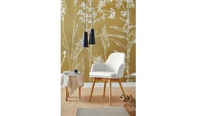 Premium collection by Home affaire Armlehnstuhl »Livry«, im 2er Set, Polsterstuhl, Schalenstuhl kaufen