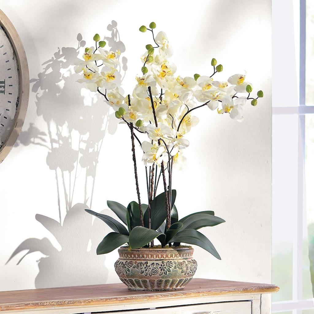 Schneider Kunstpflanze »Orchidee«