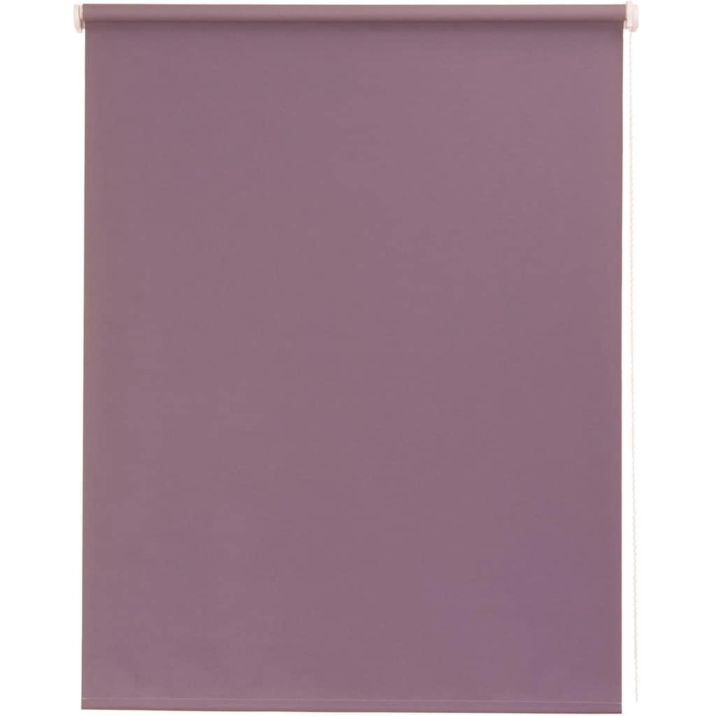 sunlines Seitenzugrollo nach Maß »Young Style Pretty Colours«, Lichtschutz, mit Bohren, freihängend, Wunschmaß