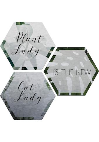 Wall-Art Alu-Dibond-Druck »Plantlady is the new Catlady«, (Set) kaufen