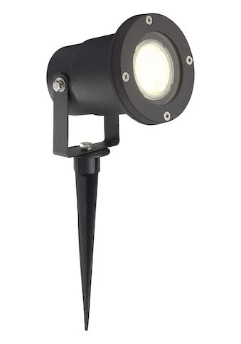 Brilliant Leuchten Janko LED Außenerdspieß 32cm schwarz kaufen