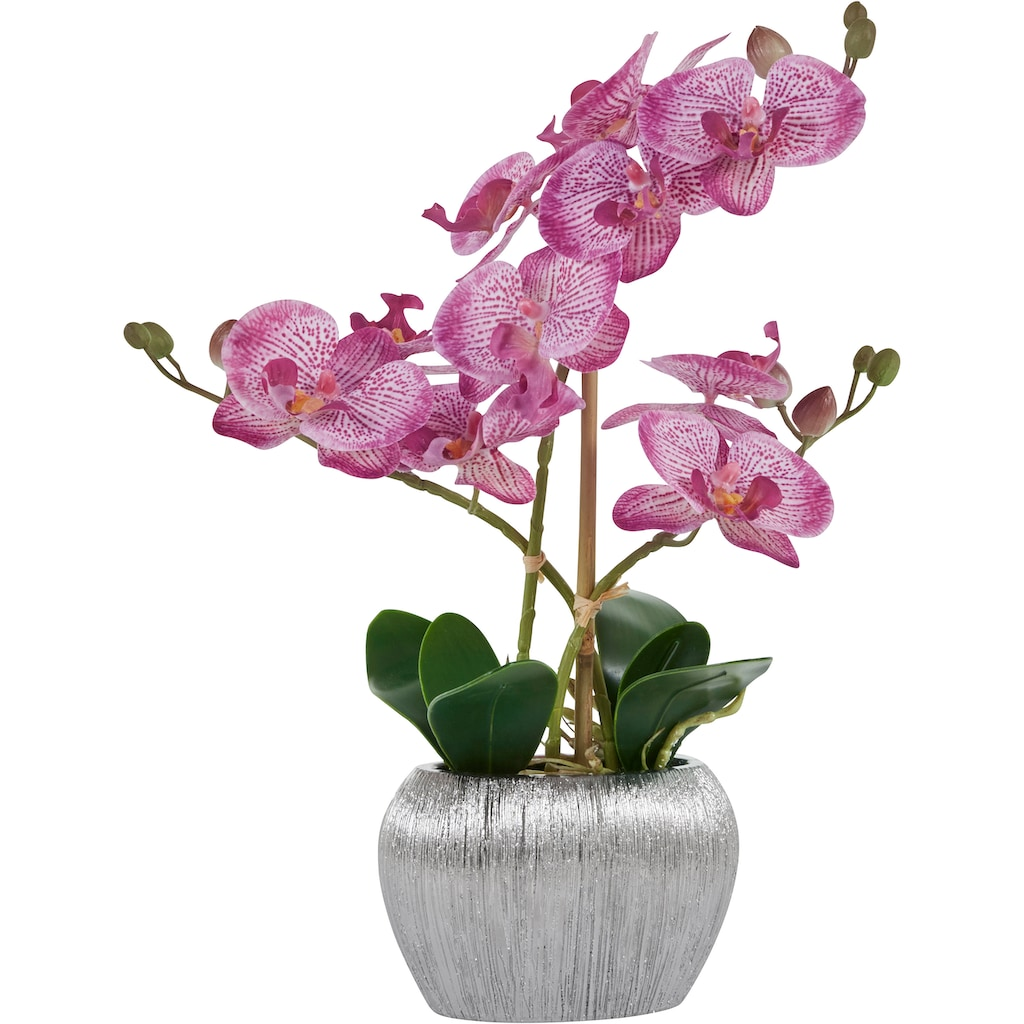 Home affaire Kunstpflanze »Orchidee«