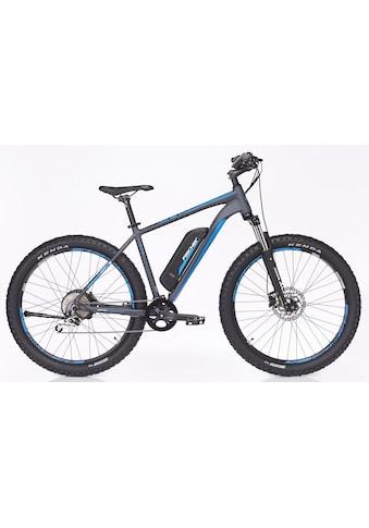 FISCHER Fahrräder E - Bike »EM 1725«, 10 Gang Shimano Deore Schaltwerk, Kettenschaltung, Heckmotor 250 W kaufen