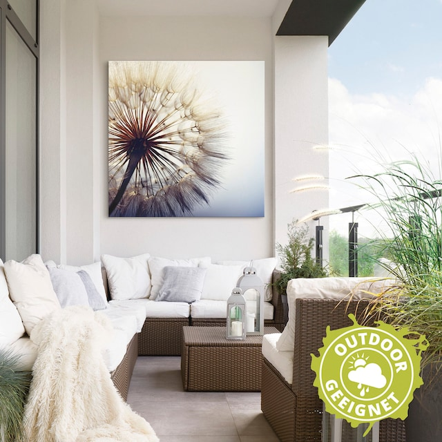 Artland Wandbild »Große Pusteblume«