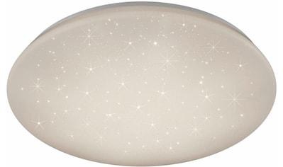 TRIO Leuchten,LED Deckenleuchte»JENNY«, kaufen