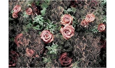 Komar Fototapete »Velvet«, bedruckt-Wald-geblümt, ausgezeichnet lichtbeständig kaufen