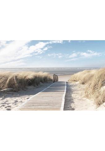 Deco - Panel »Nordsee Dünen« kaufen