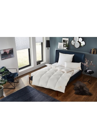 OBB Kopfkissen »Royal Bed«, (1 St.) kaufen