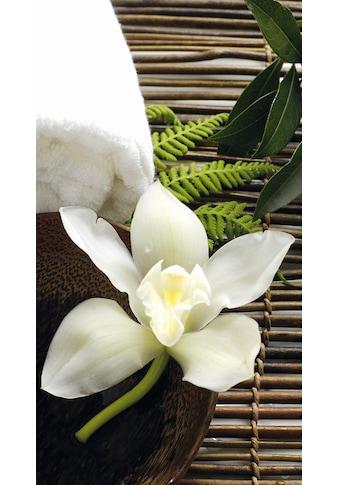 Vliestapete »Wellness Orchidee«, kaufen