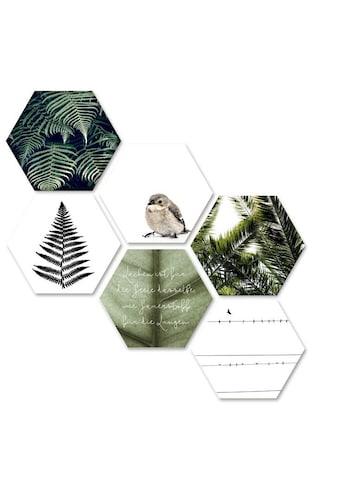 Wall-Art Mehrteilige Bilder »Natürliche Vielfalt Collage«, (Set, 6 St.) kaufen