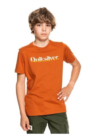 Quiksilver Kapuzenshirt »Primary Colours« kaufen