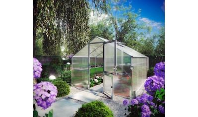KGT Gewächshaus »Orchidee IV«, (inkl. Regenrinne) kaufen