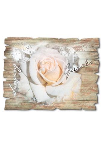 Artland Holzbild »In Buchstaben  -  Rose« kaufen