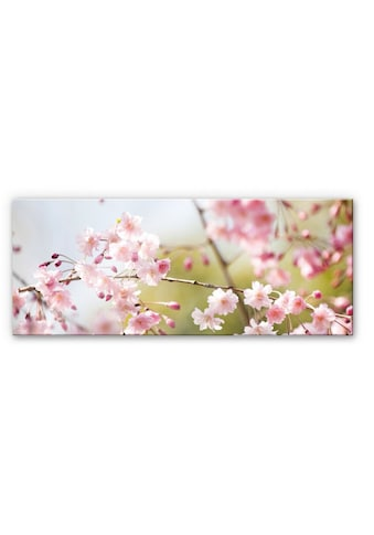 Wall-Art Küchenrückwand »3D Spritzschutz Kirschblüten« kaufen