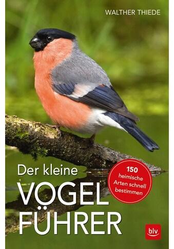 Buch »Der kleine Vogelführer / Walther Thiede« kaufen