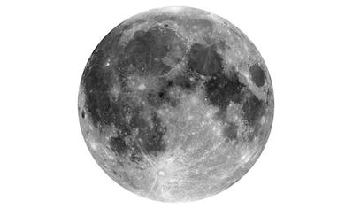 Komar Vliestapete »Moon«, abstrakt kaufen