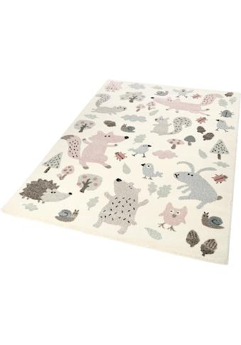 Sigikid Kinderteppich »Forest«, rechteckig, 13 mm Höhe, Wald Tiere Design, Kurzflor kaufen