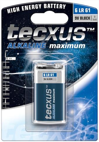 tecxus Batterie »Alkali-Mangan Batterie (Alkaline), 9 V«, 6LR61/6LP3146/9V Block kaufen