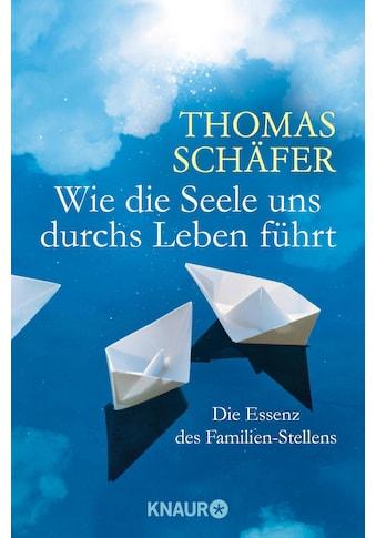 Buch »Wie die Seele uns durchs Leben führt / Thomas Schäfer« kaufen