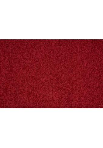 Andiamo Teppichboden »Flora«, rechteckig, 9 mm Höhe, Meterware, Breite 400 cm, uni, Wunschmaßlänge kaufen