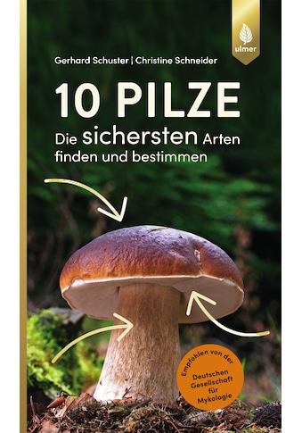 Buch »10 Pilze / Gerhard Schuster, Christine Schneider« kaufen