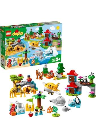 LEGO® Konstruktionsspielsteine »Tiere der Welt (10907), LEGO® DUPLO®«, (121 St.) kaufen