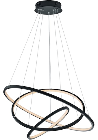 TRIO Leuchten LED Pendelleuchte »Aaron«, LED-Modul, 1 St., Farbwechsler,... kaufen