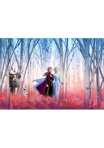 KOMAR Packung: Fototapete »Frozen Friends forever«, Ausgezeichnet lichtbeständig kaufen