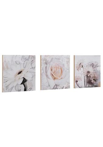 Home affaire Kunstdruck »S., D.: Gerberas Detail«, 3-tlg., je 29/29 cm kaufen