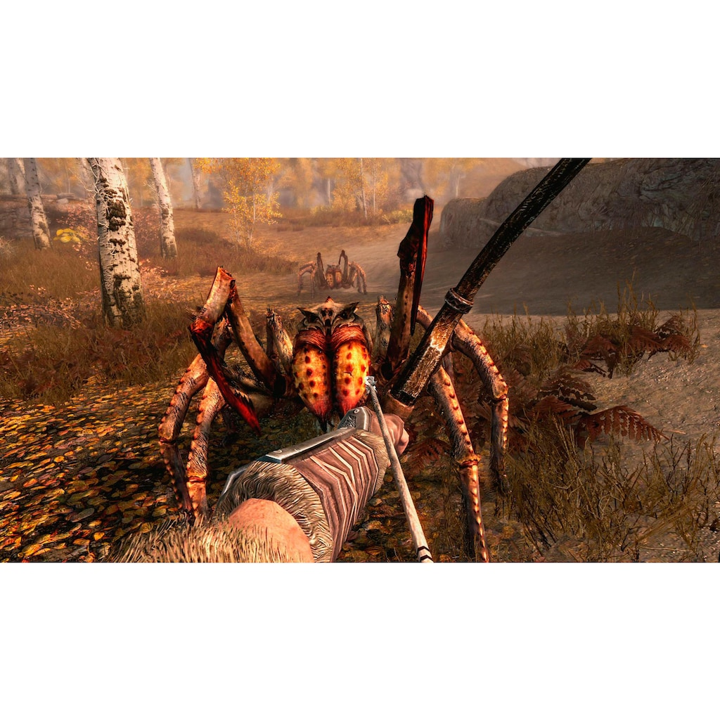 Nintendo Switch Spiel »The Elder Scrolls V: Skyrim«, Nintendo Switch