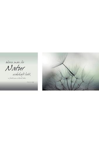 queence Leinwandbild »Natur«, (Set), 2er-Set kaufen