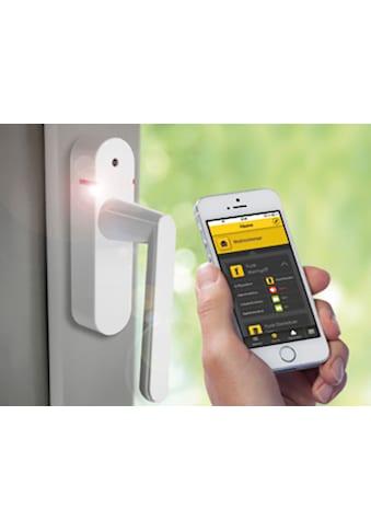SCHELLENBERG Alarmfenstergriff »46512«, weiß, Funk Smart Home, 118 db kaufen
