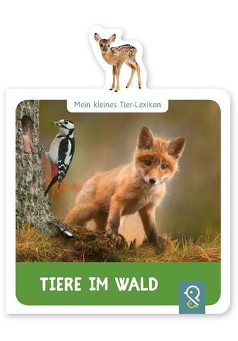 Buch »Tiere im Wald / Hannah Kastenhuber« kaufen