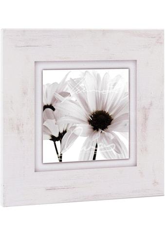 Home affaire Holzbild »Weiße Blüten«, 40/40 cm kaufen