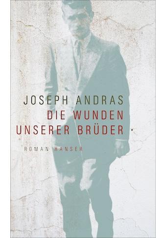 Buch »Die Wunden unserer Brüder / Joseph Andras, Claudia Hamm« kaufen