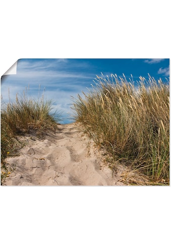 Artland Wandbild »In den Dünen Dänemarks II«, Strand, (1 St.), in vielen Größen &... kaufen