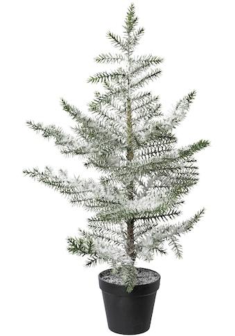 Künstlicher Weihnachtsbaum »Zimmertanne im Topf«, beschneit, Höhe ca. 64 cm kaufen