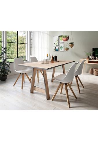 Homexperts Essgruppe »Till und Kaja«, (Set, 5 tlg., Esstisch mit 4 Stühlen) kaufen