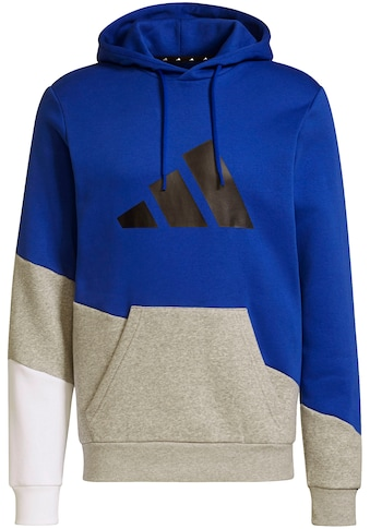 adidas Performance Kapuzensweatshirt »Sportswear Colorblock Hoodie« kaufen