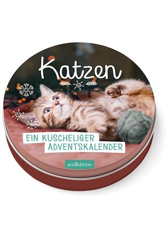 Buch »Katzen - Ein kuscheliger Adventskalender für Katzenfans / DIVERSE« kaufen
