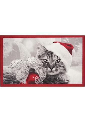 HANSE Home Fußmatte »Christmas Cat«, rechteckig, 7 mm Höhe, Fussabstreifer, Fussabtreter, Schmutzfangläufer, Schmutzfangmatte, Schmutzfangteppich, Schmutzmatte, Türmatte, Türvorleger, In- und Outdoor geeignet kaufen