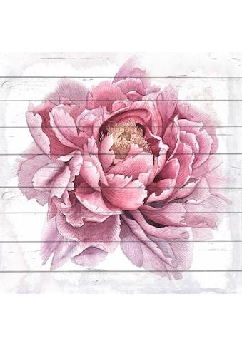 Home affaire Holzbild »Blume gezeichnet«, 40/40 cm kaufen