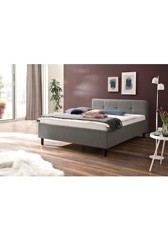 meise.möbel Polsterbett, mit diversen Bettfußvarianten kaufen