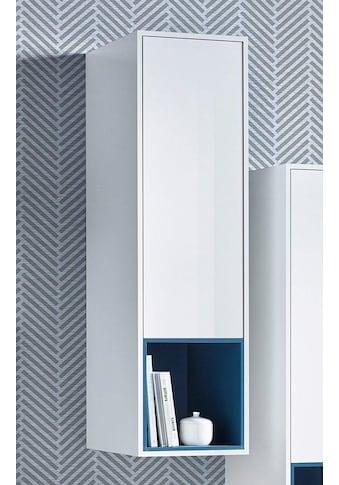 Tecnos Mehrzweckschrank »Colore«, Höhe 137 cm kaufen