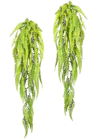 Creativ green Kunstranke »Adianthumhänger« (2 Stück) kaufen