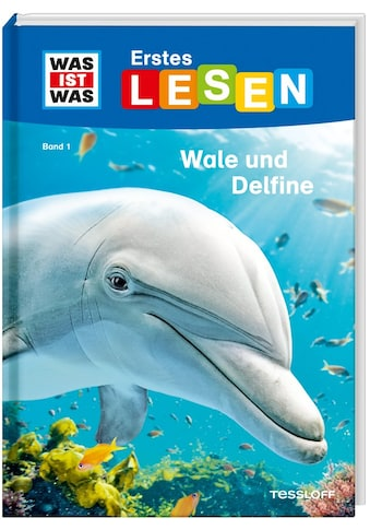 Buch »WAS IST WAS Erstes Lesen Band 1. Wale und Delfine / Christina Braun, Marie... kaufen